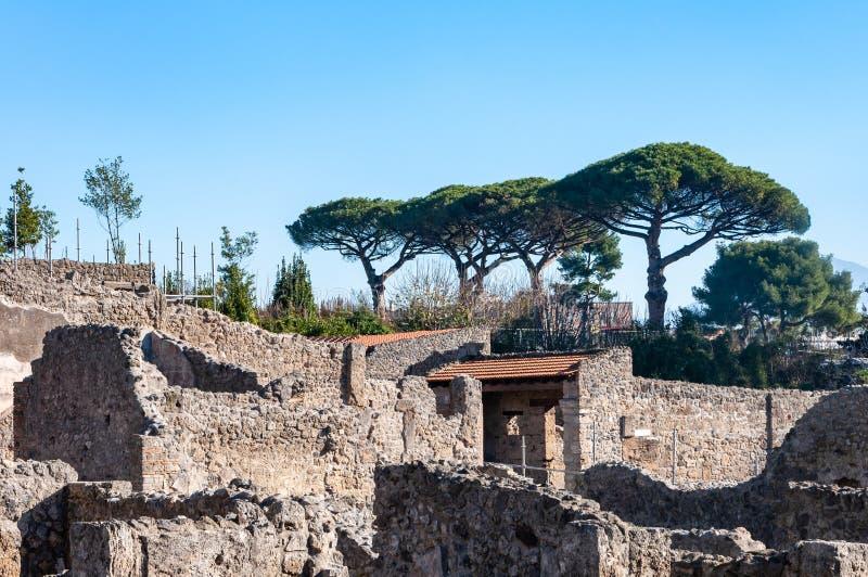 Pompeii den b?sta bevarade arkeologiska platsen i v?rlden, Italien royaltyfri fotografi