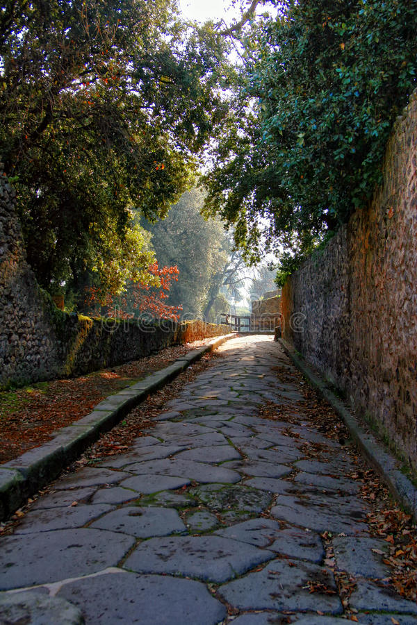 Pompeii garden. Road in the Pompeii garden. Italy stock photo