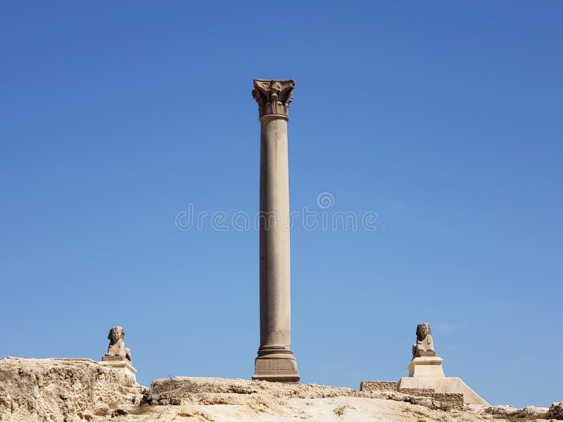 Pompeii pelare i Alexandria royaltyfri foto
