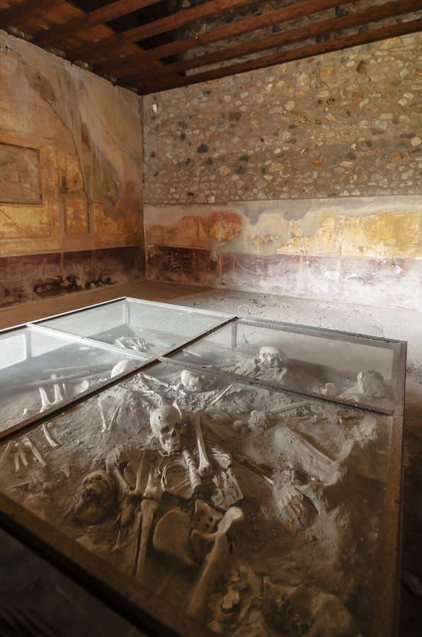 Pompeii. Skulls inside the archeologic ruins of Pompeii in Italy stock images