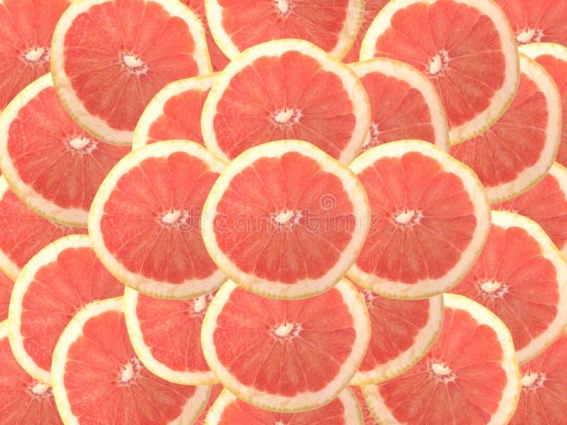Pompelmo rosso vermiglio fotografia stock libera da diritti