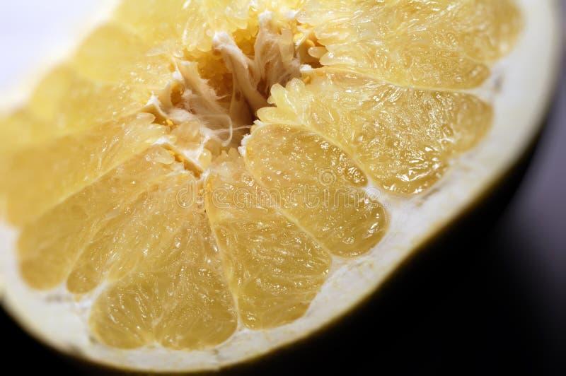 Pompelmoes (Grapefruit) stock afbeelding