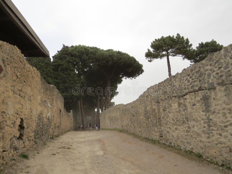 Pompey eller Pompeii italy naples royaltyfria bilder