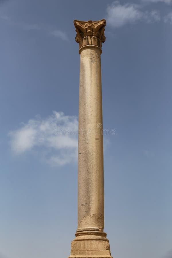 Pompey pelare i Alexandria, Egypten arkivfoto
