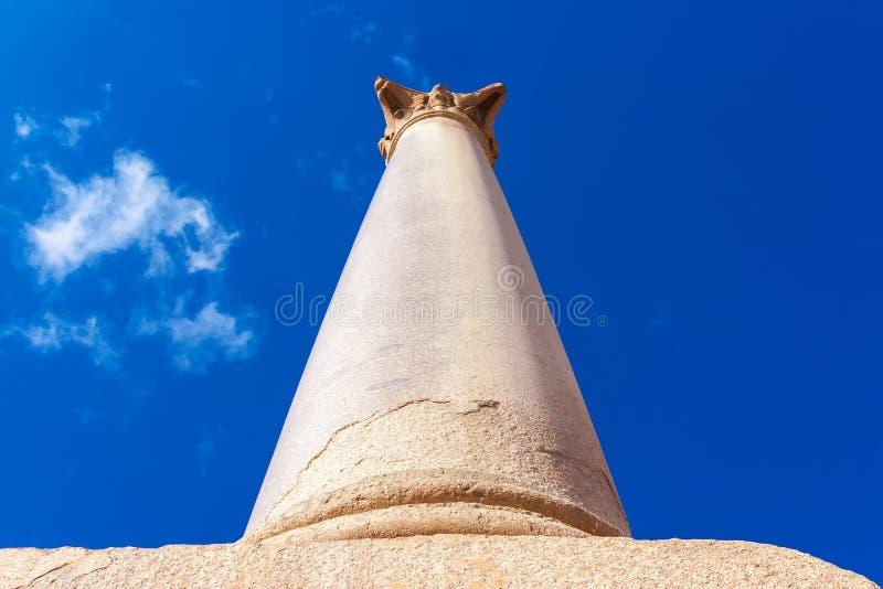 Pompey` s pijler en oude sfinx stock afbeelding