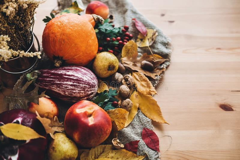 Pompoen, appelen, aubergine, groenten, kleurrijke bladeren met eikels stock afbeeldingen