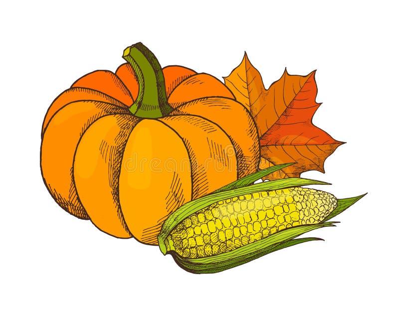 Pompoen en Graanmaïs Autumn Harvesting Vector royalty-vrije illustratie