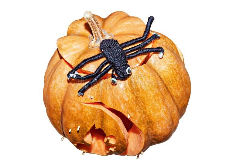 Pompoen en spin voor Halloween op witte achtergrond wordt geïsoleerd die royalty-vrije stock afbeeldingen