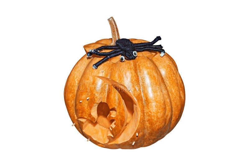 Pompoen en spin voor Halloween op witte achtergrond wordt geïsoleerd die stock foto