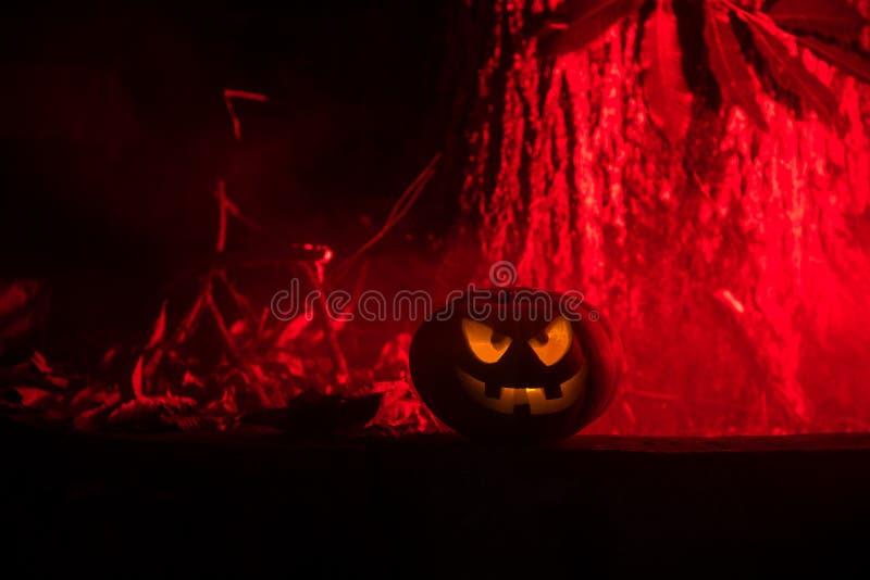 Pompoen het Branden op Forest At Night - Halloween-Achtergrond Enge Jack o Lantaarn glimlachende en gloeiende pompoen met mistig  stock fotografie