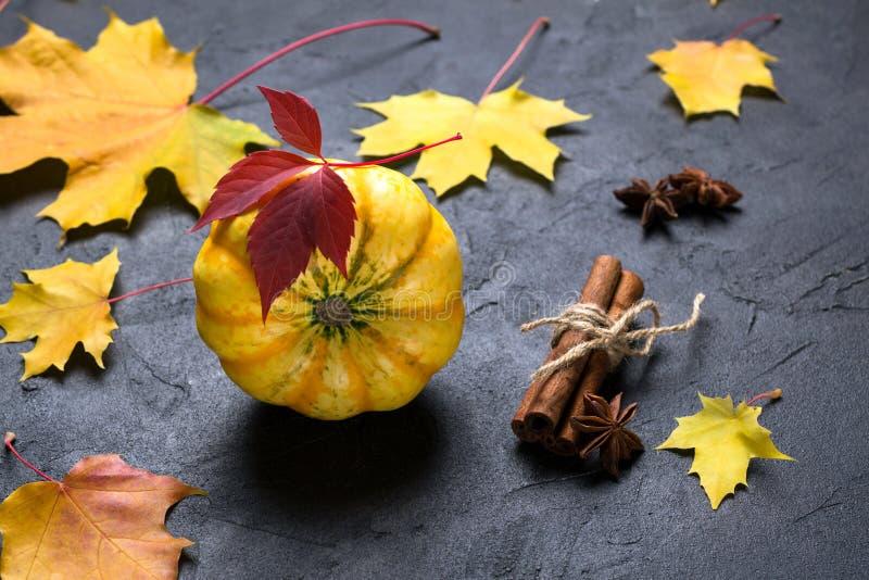 Pompoen, kaneel, steranijsplant Ingrediënten voor het maken van de herfstpompoen op een donkere achtergrond met kleurrijke blader stock foto's