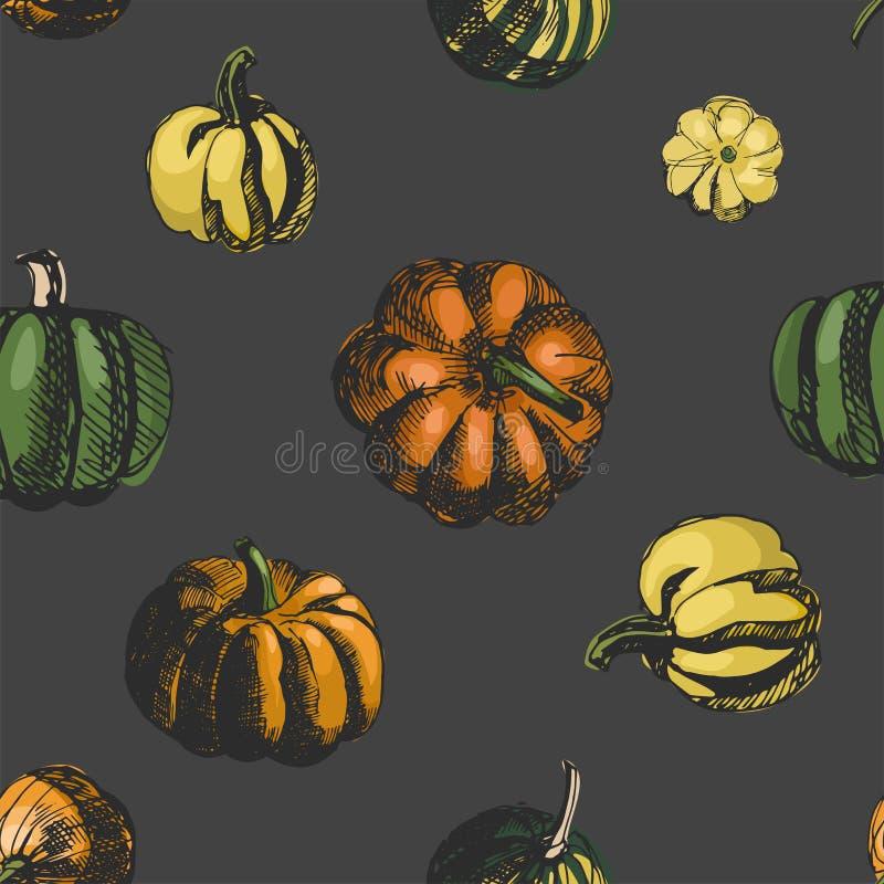 Pompoen vector naadloos patroon Schetsillustratie Uitstekende inkthand getrokken inzameling van pompoen op grijze achtergrond royalty-vrije illustratie