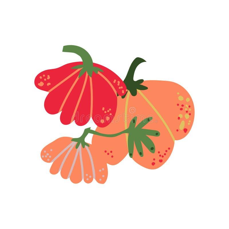 Pompoen Verse Groente, Organisch Voedzaam Vegetarisch Voedsel voor Gezonde voeding Vectorillustratie stock illustratie