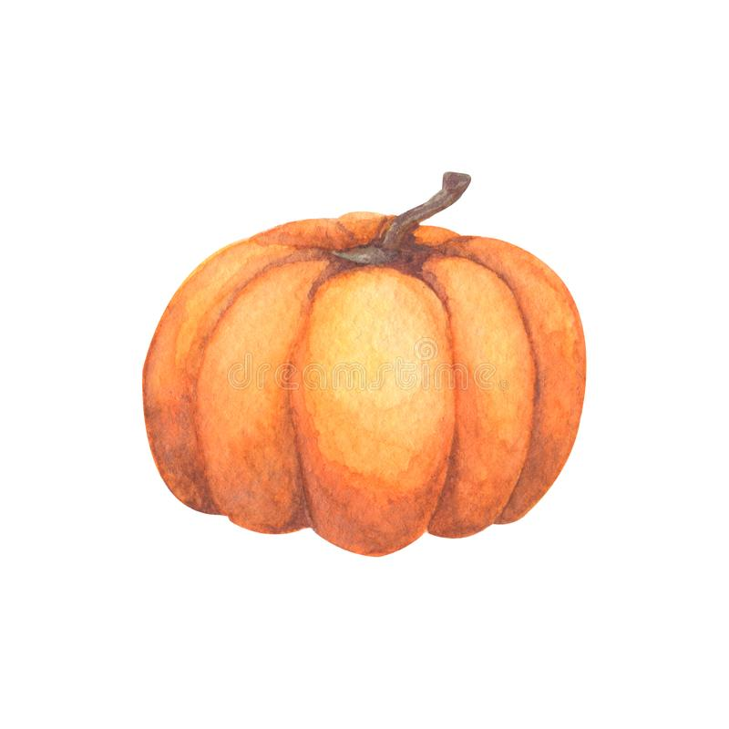 Pompoen Waterverfhand geschilderde pompoen voor Halloween en Daling op witte achtergrond Het Vegetarische ruwe voedsel van de de  vector illustratie