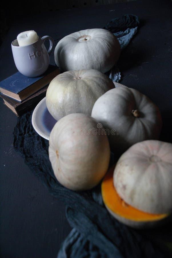 Pompoenen stock foto