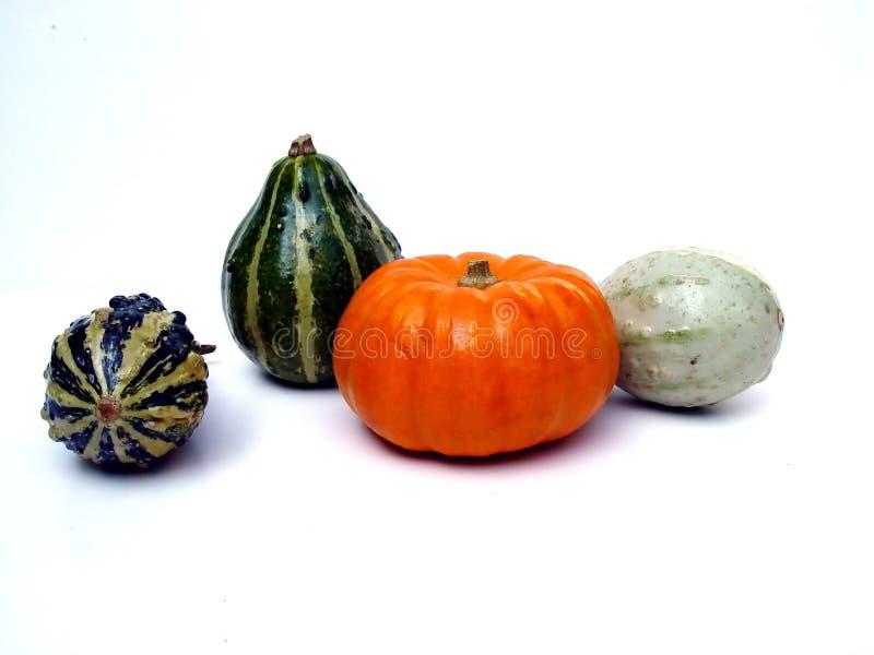 Download Pompoenen stock afbeelding. Afbeelding bestaande uit autumn - 26775
