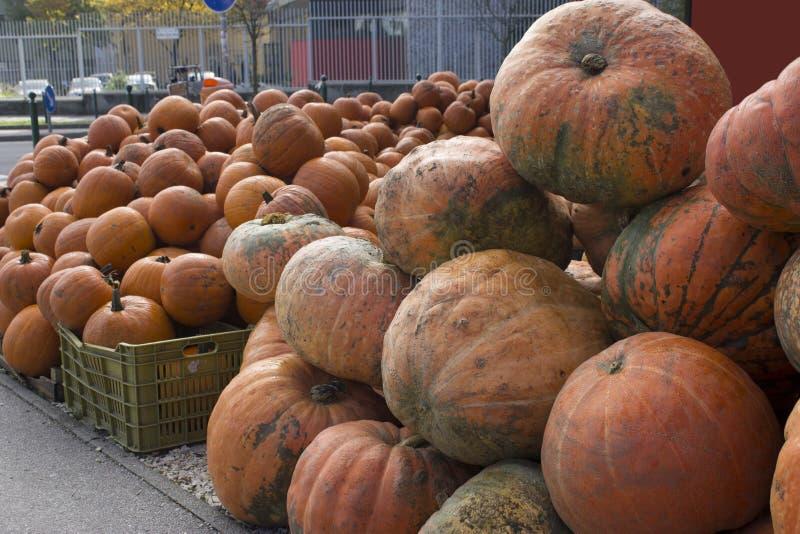 Pompoenen bij een Halloween-verkoop royalty-vrije stock afbeelding