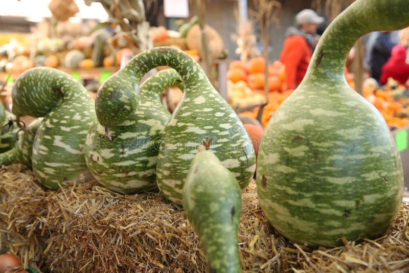 Pompoenen en pompoenen op verkoop bij de markt royalty-vrije stock foto