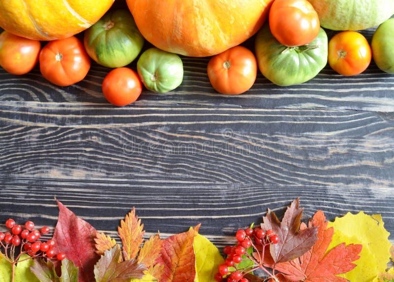 Pompoenen en tomaten op de donkere houten achtergrondherfstbladeren na de regen, exemplaarruimte royalty-vrije stock afbeeldingen