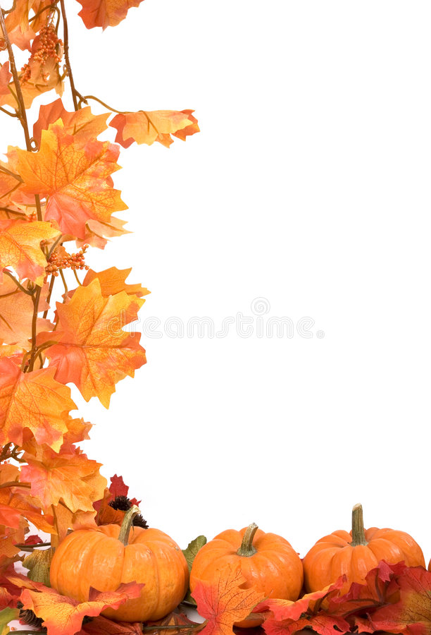 Pompoenen met dalingsbladeren stock fotografie