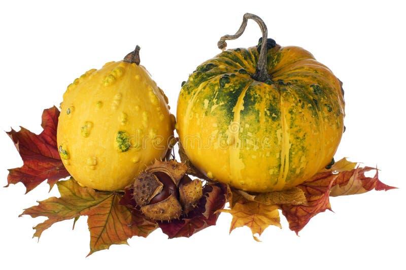 Pompoenen op de herfstbladeren royalty-vrije stock foto