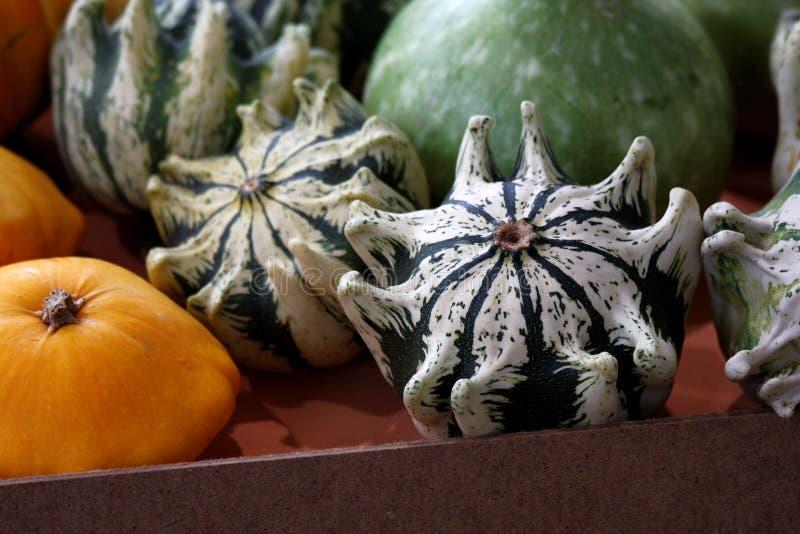 Pompoenen op de markt stock foto's