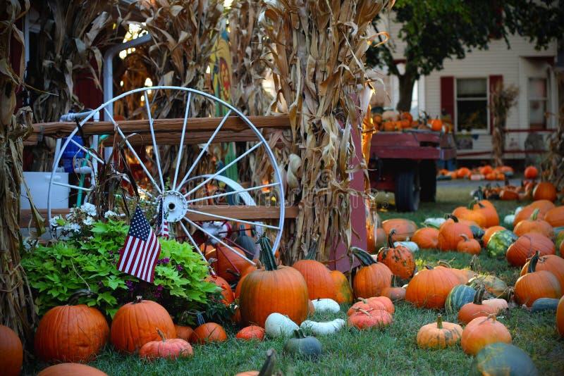 Pompoenen voor verkoop Amerikaanse landbouwbedrijf en schuren bij de herfst in Illinois stock afbeeldingen