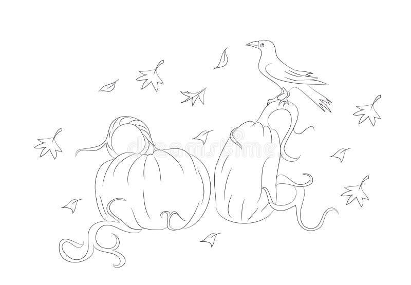 Pompoenen waarop de kraai op Halloween, lijnen, vector zit stock illustratie