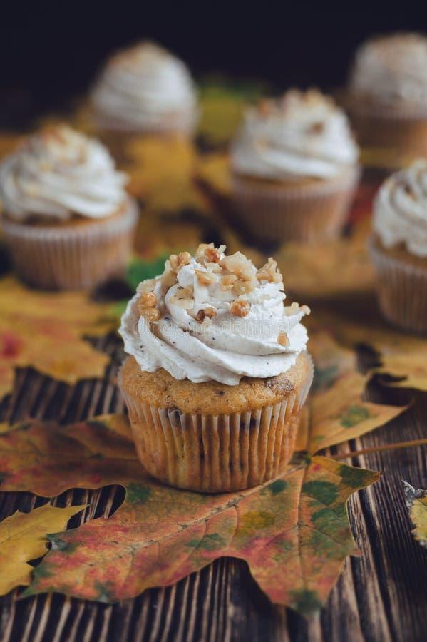 Pompoenokkernoot cupcakes stock afbeelding