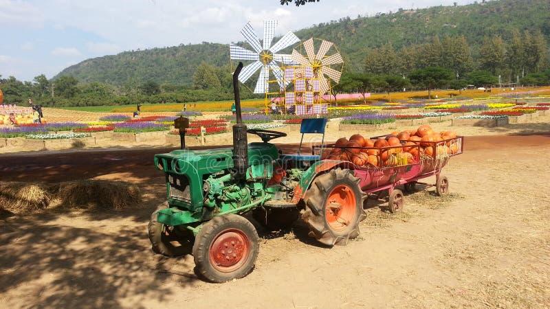 Pompoenvrachtwagen in Jim Thompson Farm royalty-vrije stock foto's