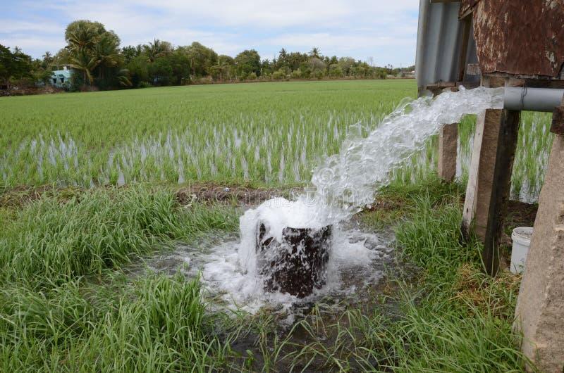 Pompować wodę zdjęcie stock