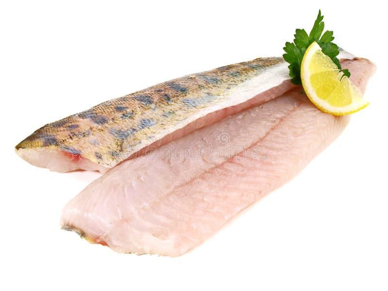 Ponceuse - filet de poissons de sandre images libres de droits