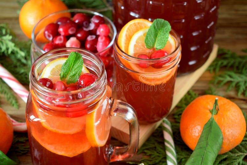 Poncz z cranberries i pomarańcze dekorował z mennicą i kijem cynamon obrazy royalty free