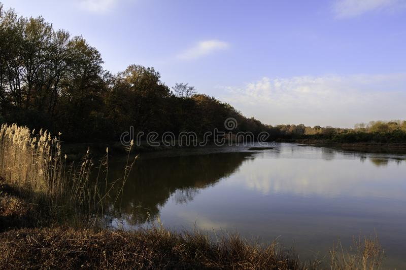 Pond in autumn with sunrise over background of frozen water, trees in November colors with blue sky and cloud. In France royalty free stock images