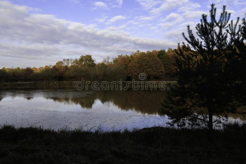 Pond in autumn with sunrise over background of frozen water, trees in November colors with blue sky and cloud. In France stock photo