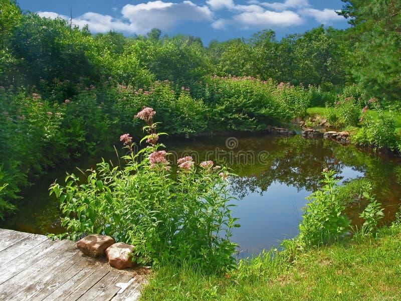 Pond with Bridge stock photos