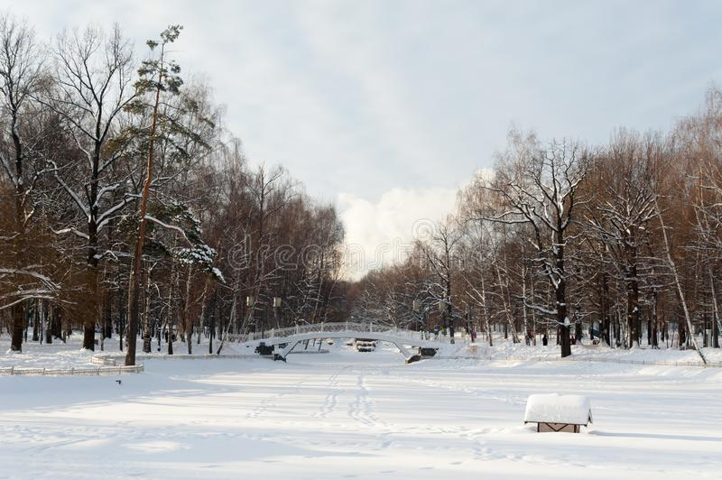 Pond covered with snow and trees 09.01.2019. Pond covered with snow and trees in park on sunny winter day royalty free stock images