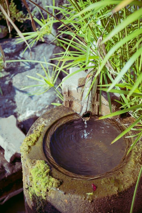 Pond detail in Japanese zen garden royalty free stock photo