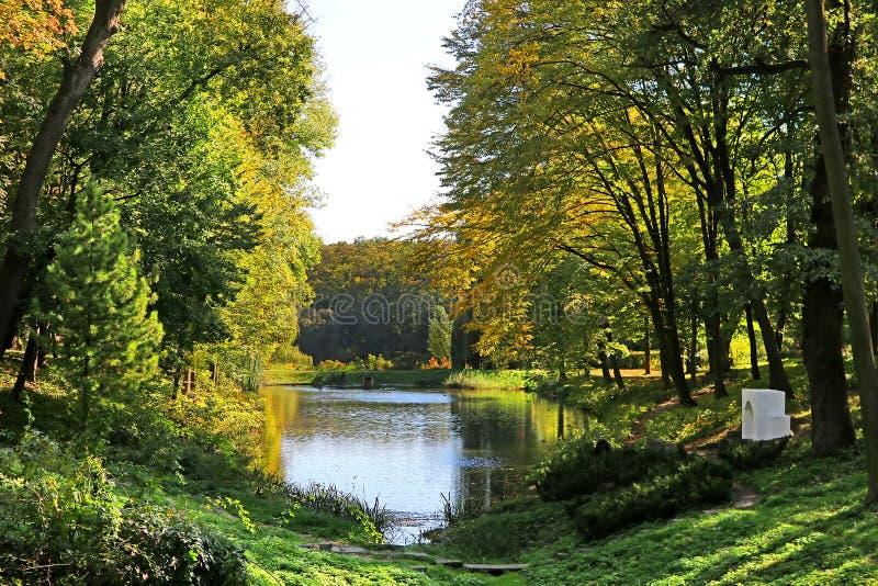 Pond with ducks in autumn park Oleksandriya in Bila Tserkva, Ukraine. Europe stock photo