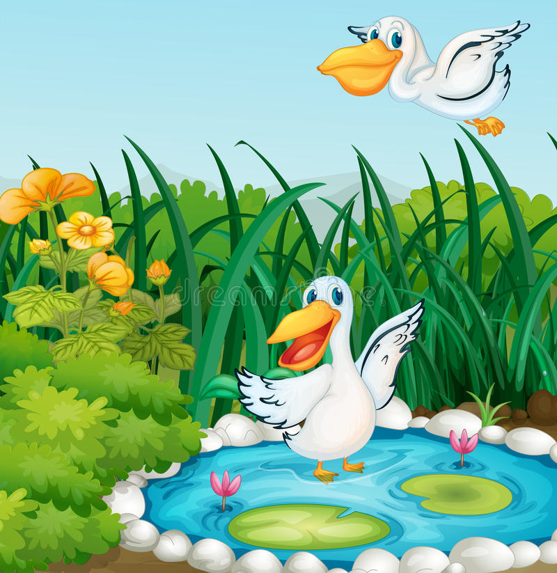 A pond with ducks royalty free illustration
