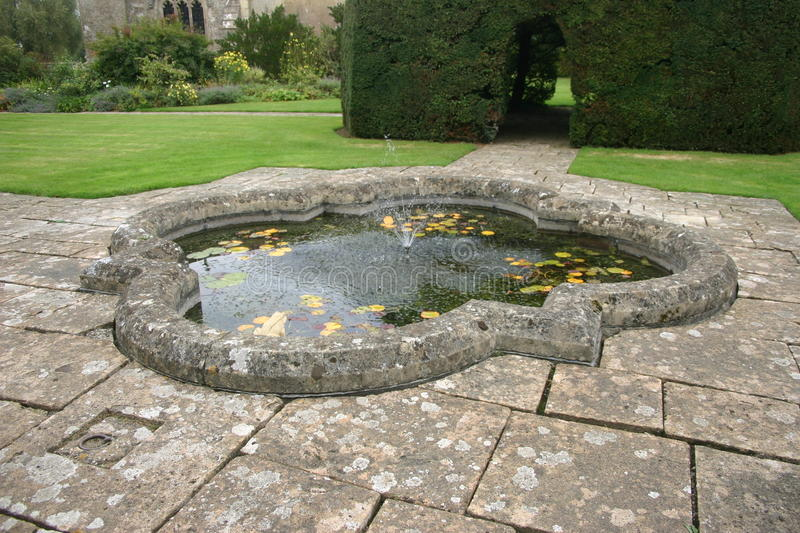 Pond with floating plants. Decoratively shaped pond with floating plants surrounded by paving with lawns and buildings beyond royalty free stock photo