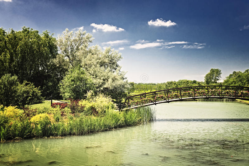 Download Pond with foot bridge stock image. Image of field, outdoors - 15795357