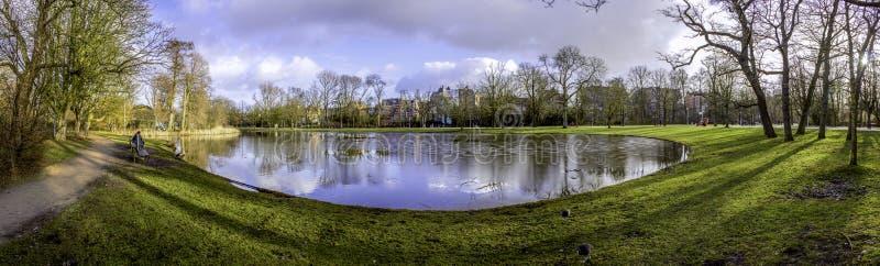 Pond a foto panorâmico da paisagem em Vondelpark, Amsterdão É um plutônio foto de stock royalty free