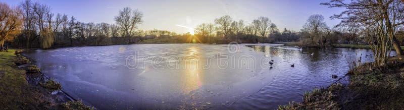 Pond a foto panorâmico da paisagem em Vondelpark, Amsterdão fotos de stock royalty free