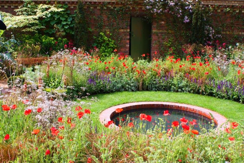 Download Pond garden stock photo. Image of door, nature, pond, violet - 6060310