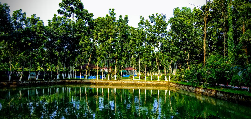 Pond in gazipur, Bangladesh. Pond in gazipur nearby Dhaka, Bangladesh stock images