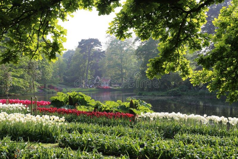 Pond in Keukenhof,  the Netherlands stock photos