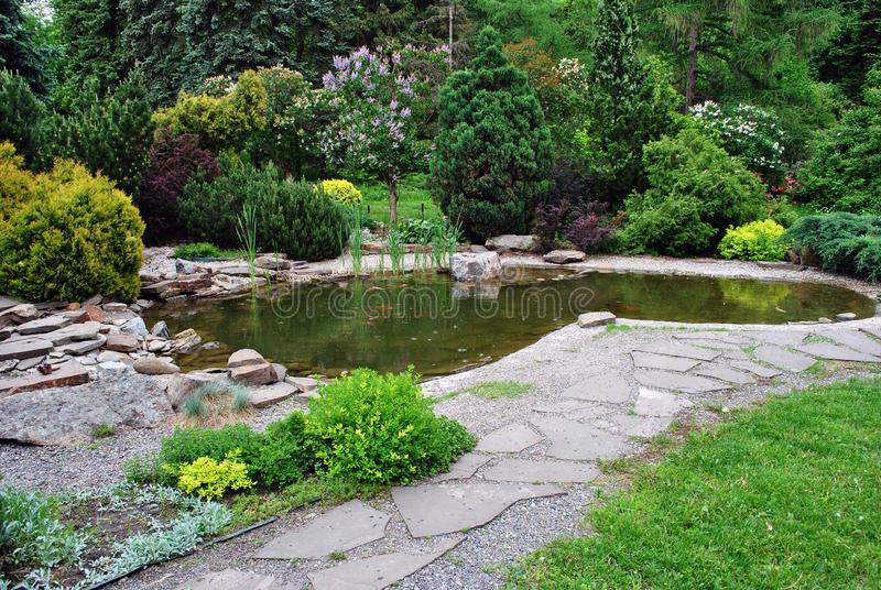 Pond with koi carps and landscape with blooming bushes around, botanical garden central alley, Kharkiv stock image