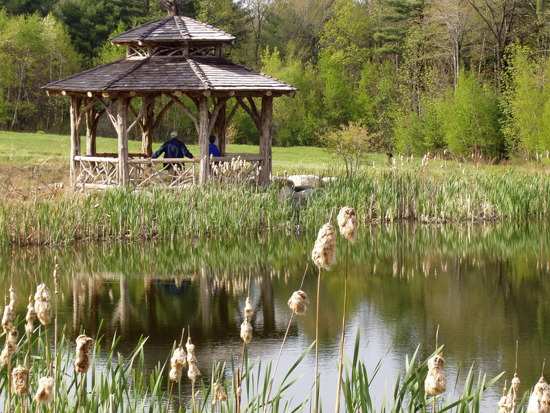 Pond, Late Summer Stock Photos