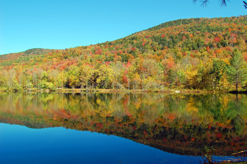 Download Pond mountain reflections stock image. Image of leaf, inverse - 3377863